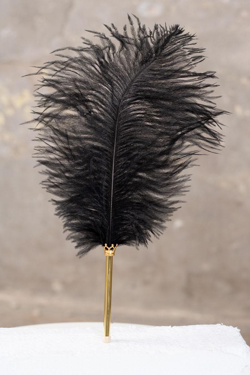 Fjaderpenna---svart